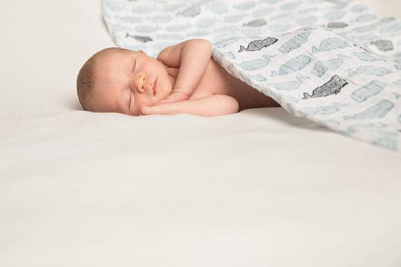 Baby Boy N